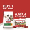June offer Emailer 1 1 - BUY 1.5 KG Kitten Cat Dry food with Chicken and GET 4 Wet food Pouches FREE