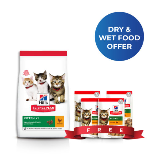 kitten bundle4 - BUY 1.5 KG Kitten Cat Dry food with Chicken and GET 4 Wet food Pouches FREE