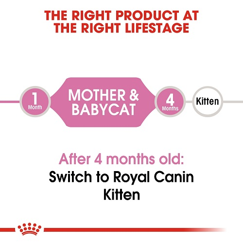 rc fhn m b cv eretailkit 1 3 - Royal Canin Feline Health Nutrition Mother & Babycat 4 Kg