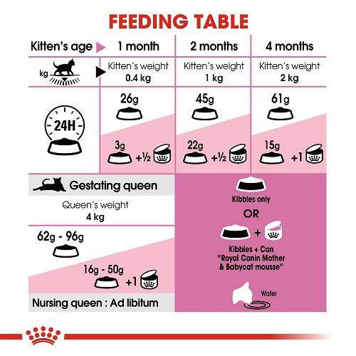 rc fhn m b cv eretailkit 4 3 - Royal Canin Feline Health Nutrition Mother & Babycat 4 Kg