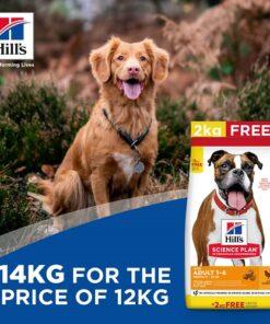 Bonus Bag offer 1 Adult light medium breed 1 - Home