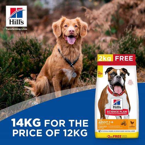 Bonus Bag offer 1 Adult light medium breed 1 - FREE 2Kg on Hill's Science Plan Light Medium Adult Dog Food With Chicken Bonus Bag