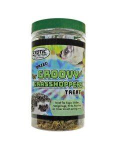 eoen2647 groovy grasshoppers new 1 - Home