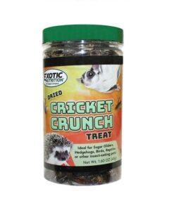 eoen2654 cricket crunch new 1 - Home