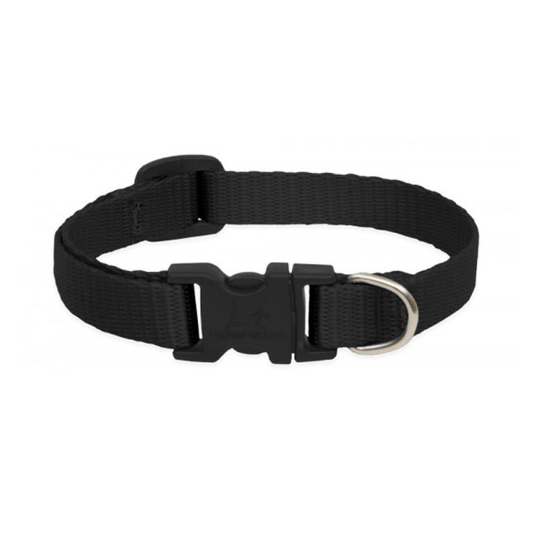 340 - Basics Cat Safety Collar Black