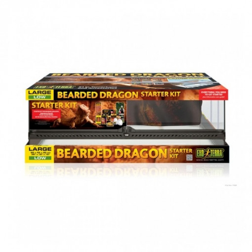 43 1 - Exo Terra - Bearded Dragon Starter Kit