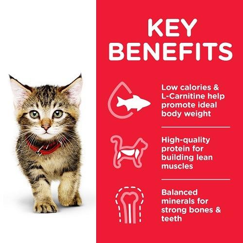 604049 CAT Kitten Chicken Transition Benefits - Hill's Science Plan - Kitten Food With Chicken