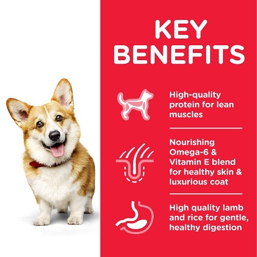 604235 Adult SM Lamb Transition Benefits - Hill's Science Plan - Small & Mini Adult Dog Food With Lamb & Rice
