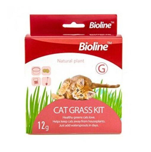 6970117120318 cat grass - Bioline - Cat Grass Kit 12g