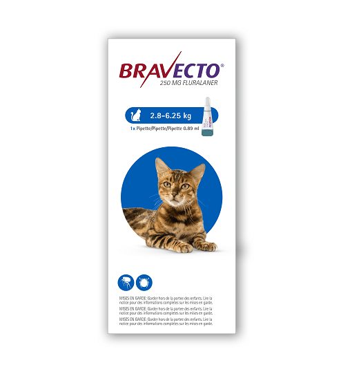 Bravecto Cat Bengal 1chew - Bravecto - Spot-On Solution for Medium Cats (Single Pipette) 250mg