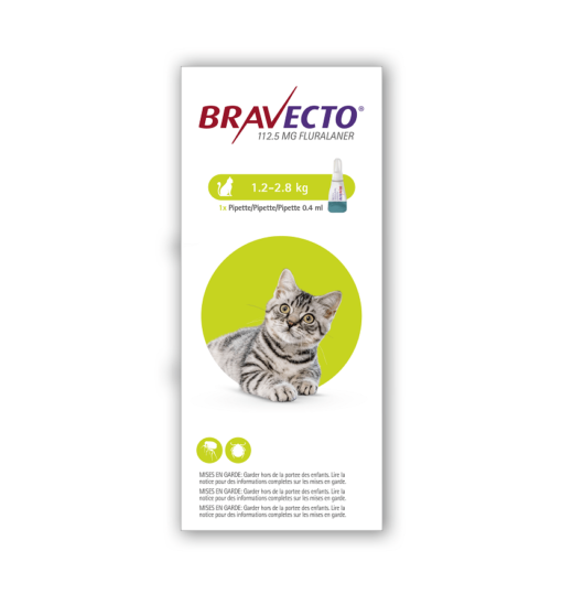 Bravecto Cat ShortHair 1chew copy - Bravecto - Spot-On Solution for Small Cats (Single Pipette) 112.5mg