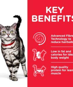 CAT Adult Hairball Indoor Chicken Transition Benefits - Deals