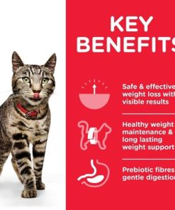 CAT Adult Perfect Weight Chicken Transition Benefits - Deals