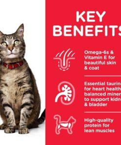 CAT Adult Tuna Transition Benefits - Deals