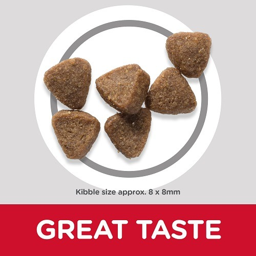 CAT Kitten Chicken Kibbles 3 2 - BUY 1.5 KG Kitten Cat Dry food with Chicken and GET 4 Wet food Pouches FREE
