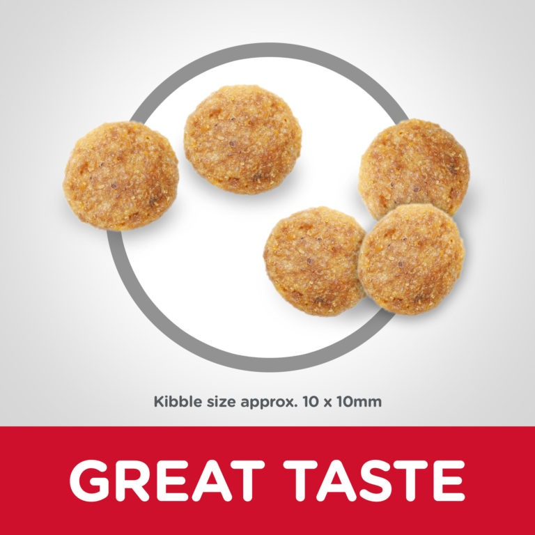 CAT Mature Adult Chicken Kibbles - Hill's Science Plan - Mature Adult 7+ Cat Food With Chicken