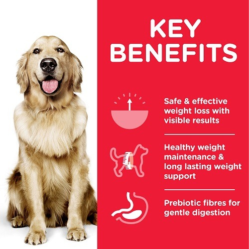 DOG Adult Large Perfect Weight Chicken Transition Benefits - Hill's Science Plan - Perfect Weight Large Breed Adult Dog Food With Chicken