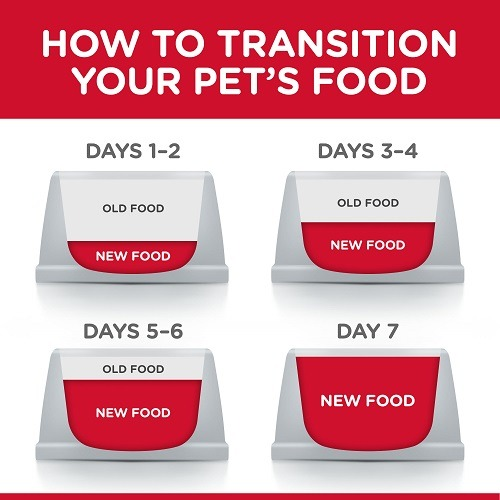 DOG Food Transition 1 6 - Hill's Science Plan Medium Adult Dog Food With Chicken