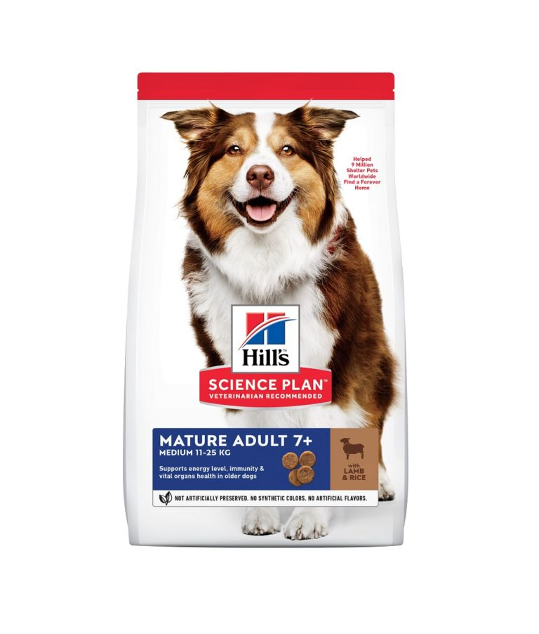 dog food medium lamb