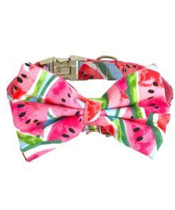 Hanz Oley Watermelon Inspired Bow Tie - Deals