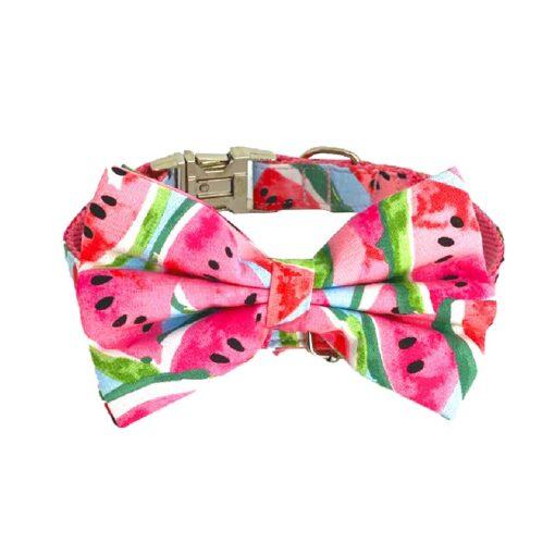 Hanz Oley Watermelon Inspired Bow Tie - Hanz & Oley Watermelon Inspired Bow Tie