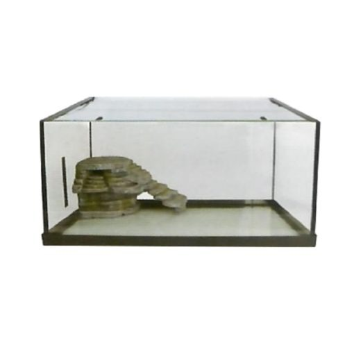 Kw Glass Turtle Tank Without Rl101