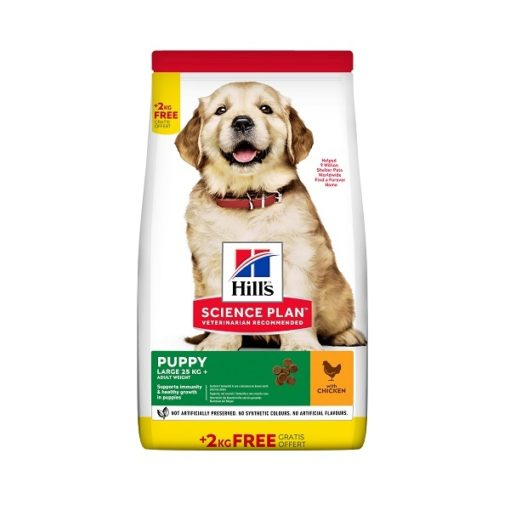 Puppy large value pack