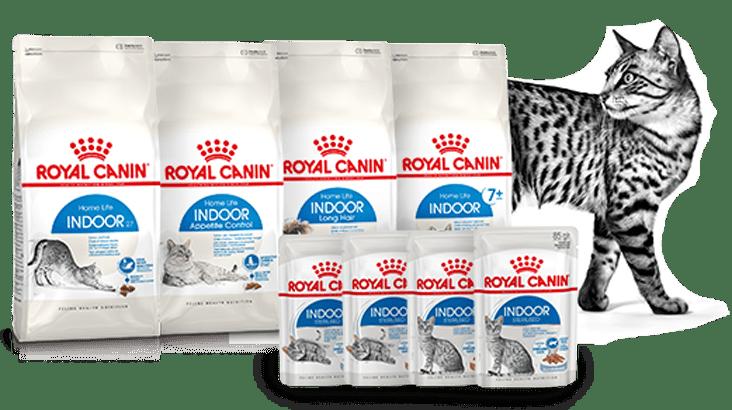 Royal Canin Indoo Buy 1 Get Free