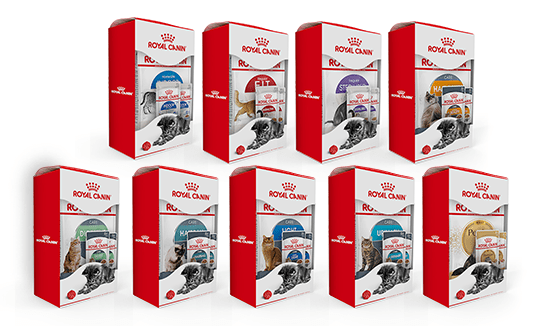 Royal Canin with Free Pouches Slider