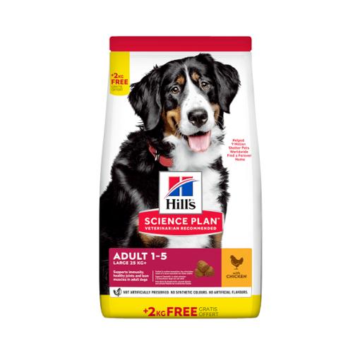 Science Plan Large Breed Adult Dog Food With Chicken Bonus Bag