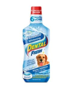 Whitening Dental Fresh Dog