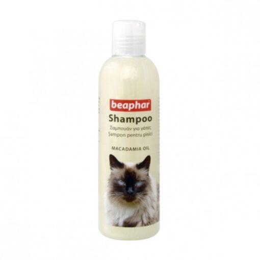 Shampoo Macadamia Oil
