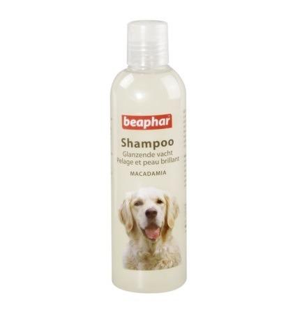 beaphar shampoo dogs 1 - Beaphar Shampoo Macadamia Oil for Dogs, 250ml