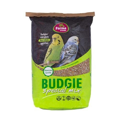 birds budgie 0 1 - Farma - Budgie Budget Mix