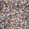 birds finchmix 1 - Farma - Finch Budget Mix