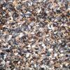 birds finchmix 02 - Farma - Finch Mix