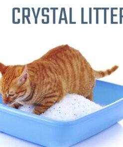 Crystal Litter
