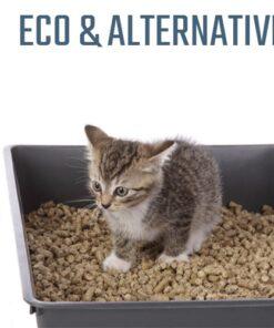 Eco & Alternative