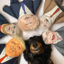- Pet Hates Jeremy Dog Toy
