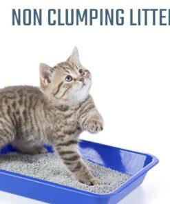 Non Clumping Litter