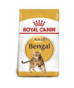 Royal Canin Feline Breed Nutrition Bengal