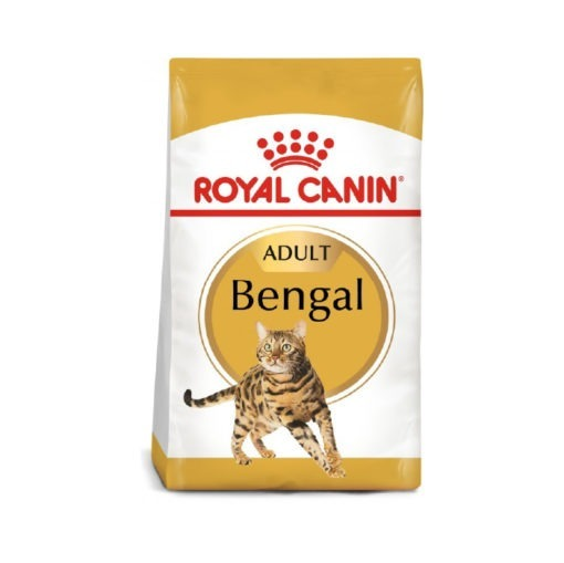 Royal Canin Feline Breed Nutrition Bengal