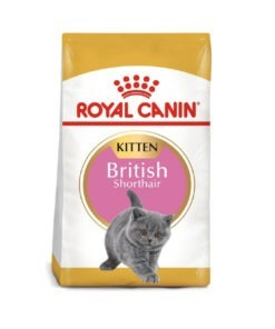 Royal Canin - Feline Breed Nutrition British Shorthair Kitten