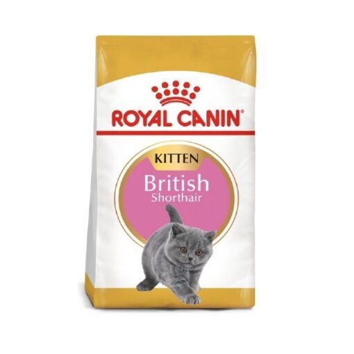 Royal Canin - Feline Breed Nutrition British Shorthair Kitten