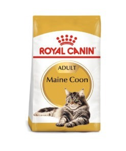 Royal Canin - Feline Breed Nutrition Maine Coon