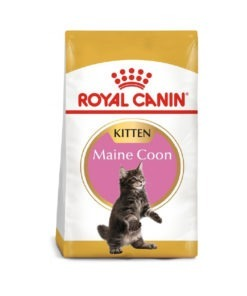 Royal Canin - Feline Breed Nutrition Maine Coon Kitten