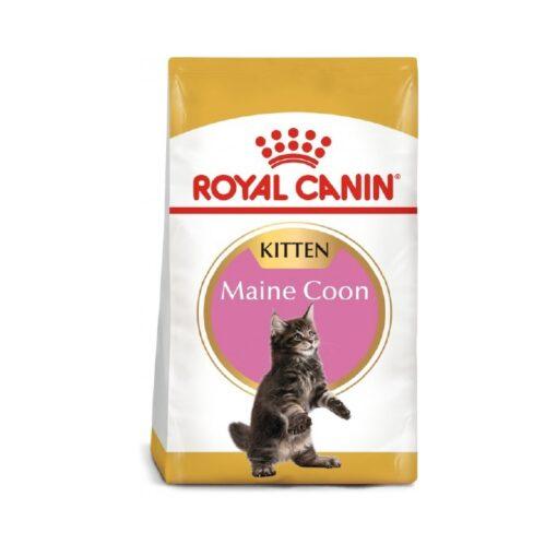 Royal Canin - Feline Breed Nutrition Maine Coon Kitten