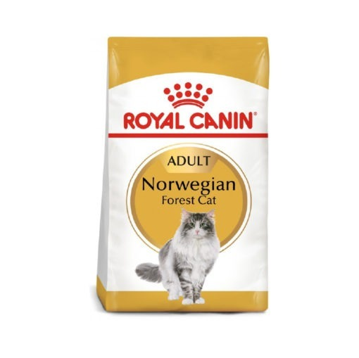Royal Canin Feline Breed Nutrition Norwegian Forest Cat