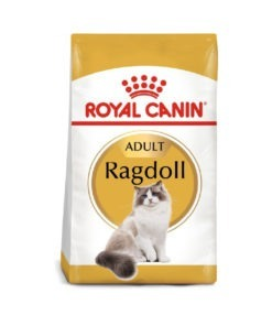 Royal Canin - Feline Breed Nutrition Ragdoll