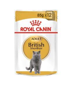 Royal Canin - British Shorthair (85G)